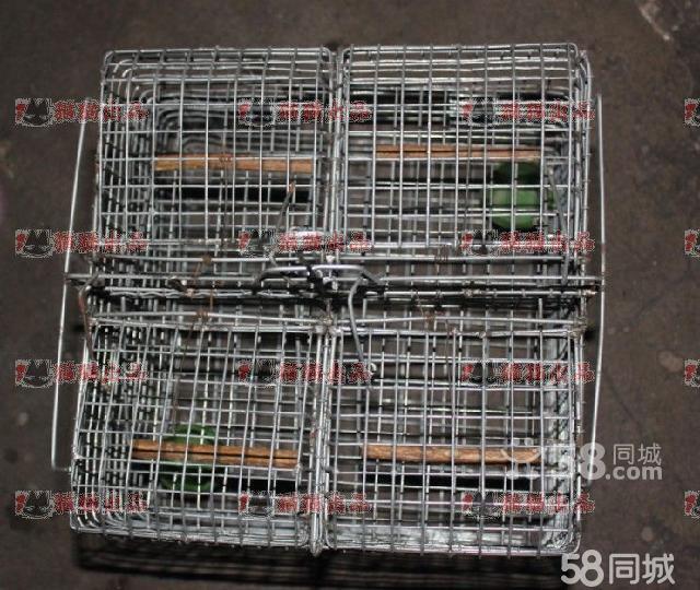 【图】手工制作不锈钢鸟笼
